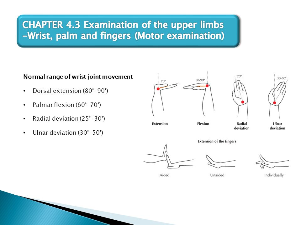 Normal range of wrist joint movement Dorsal extension (80°-90°) Palmar flexion (60°-70°) Radial deviation (25°-30°) Ulnar deviation (30°-50°)