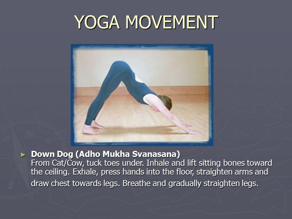 YOGA MOVEMENT ► Down Dog (Adho Mukha Svanasana) From Cat/Cow, tuck toes under.