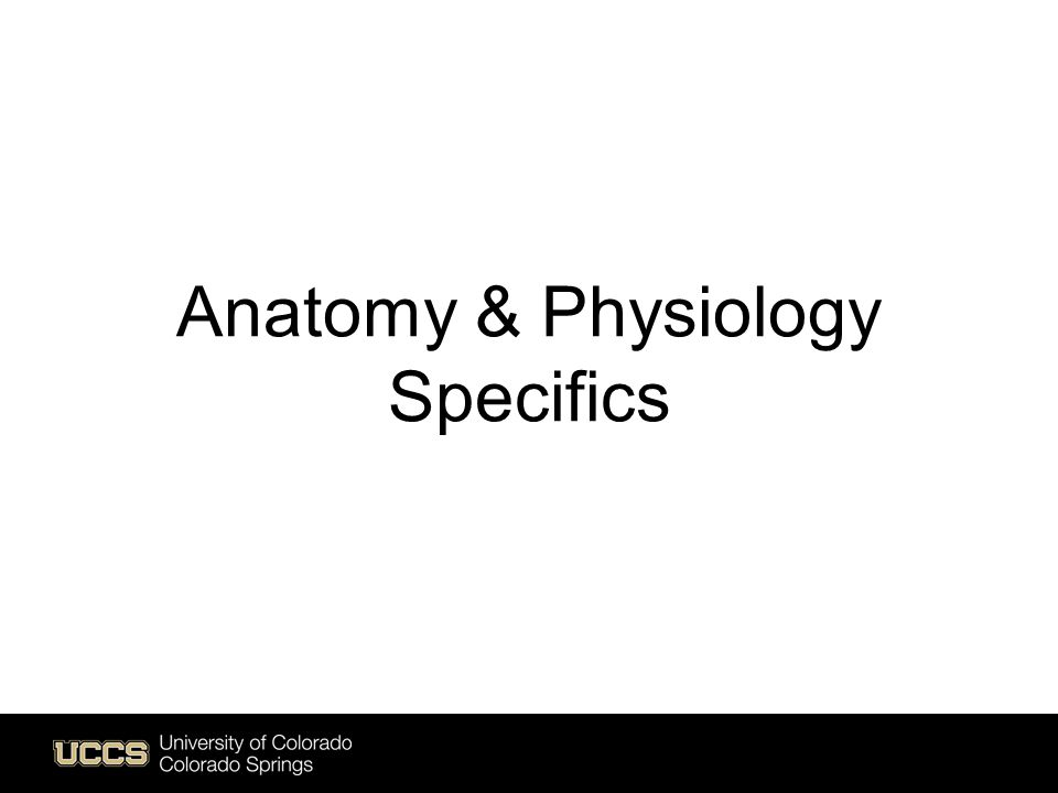 Anatomy & Physiology Specifics