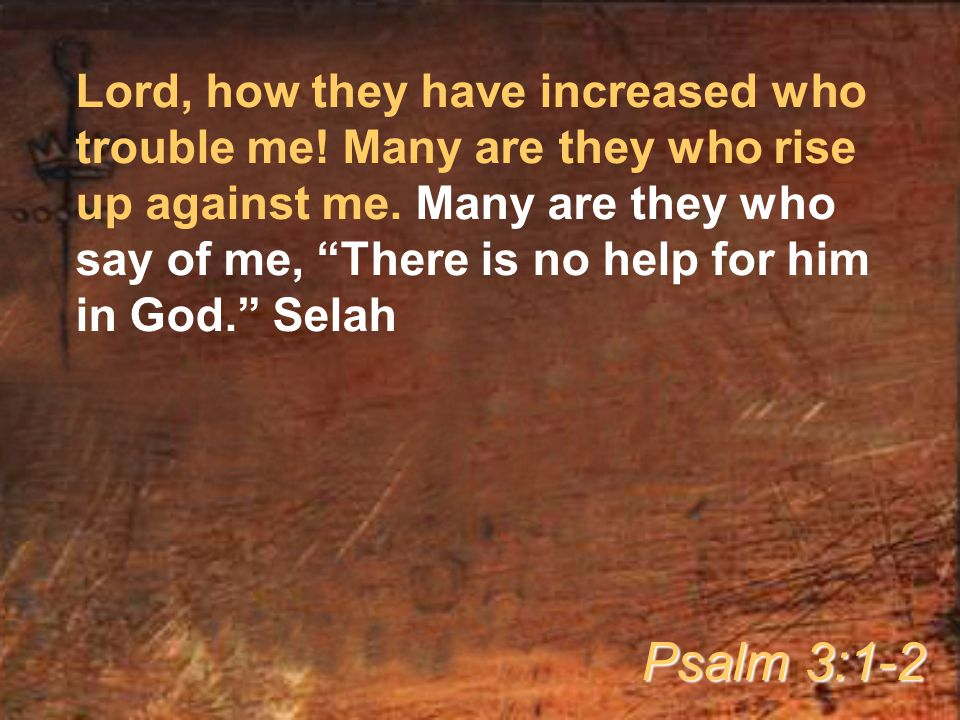 Lord, how they have increased who trouble me. Many are they who rise up against me.