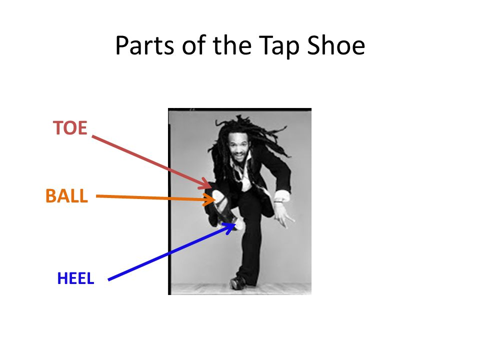 Parts of the Tap Shoe TOE BALL HEEL