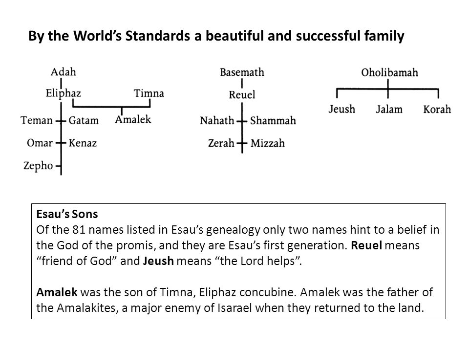 By the World's Standards a beautiful and successful family Esau's Sons Of the 81 names listed in Esau's genealogy only two names hint to a belief in the God of the promis, and they are Esau's first generation.