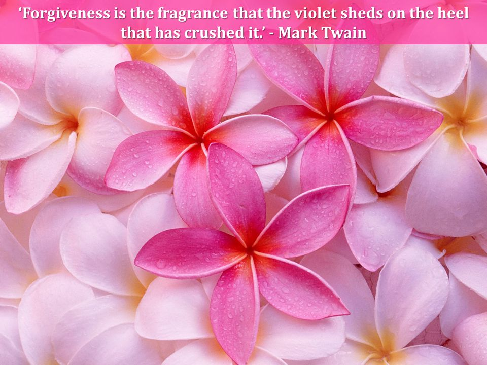 'Forgiveness is the fragrance that the violet sheds on the heel that has crushed it.' - Mark Twain