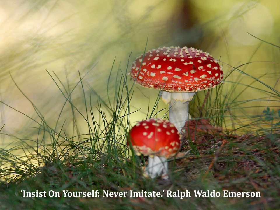 'Insist On Yourself: Never Imitate.' Ralph Waldo Emerson 'Insist On Yourself: Never Imitate.' Ralph Waldo Emerson