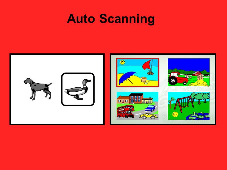 Auto Scanning