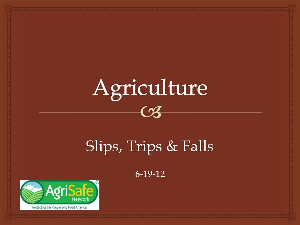 Slips, Trips & Falls 6-19-12