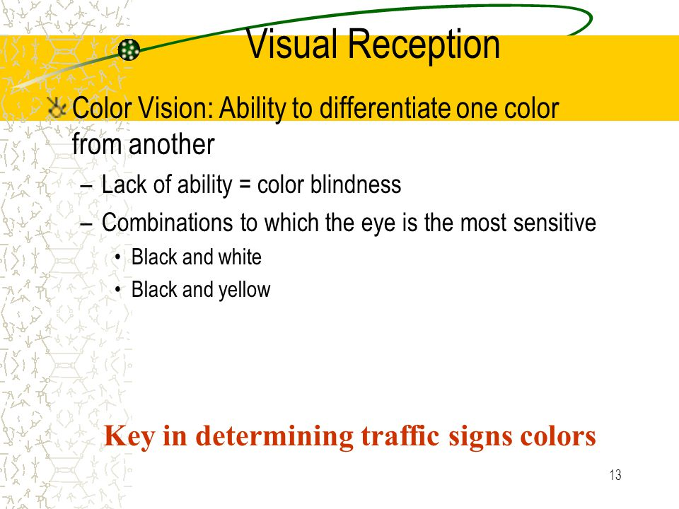 12 Visual Reception Peripheral Vision: Ability to see objects beyond the cone of clearest vision (160 degrees) –Age dependent –Objects seen but detail
