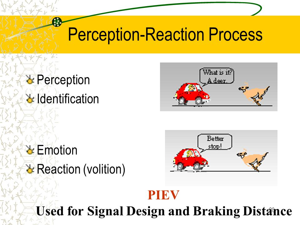 19 Perception/Reaction Time