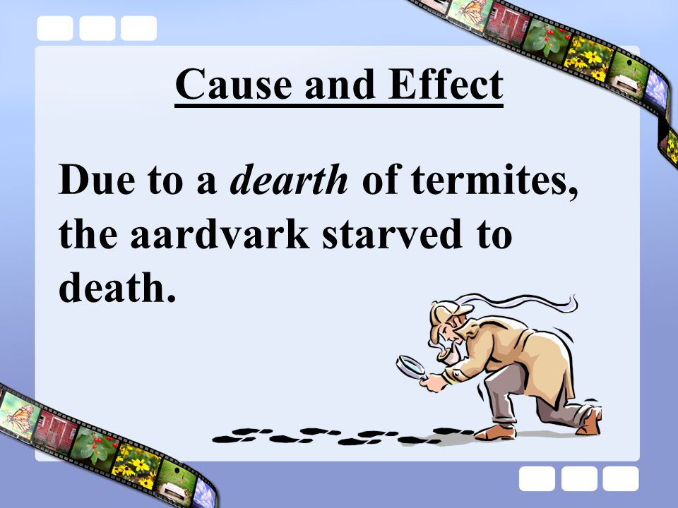 Cause and Effect Due to a dearth of termites, the aardvark starved to death.