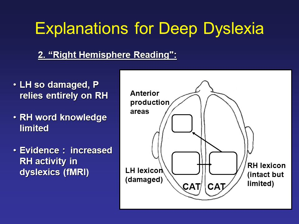 Explanations for Deep Dyslexia LH so damaged, P relies entirely on RHLH so damaged, P relies entirely on RH RH word knowledge limitedRH word knowledge limited Evidence : increased RH activity in dyslexics (fMRI)Evidence : increased RH activity in dyslexics (fMRI) Anterior production areas RH lexicon (intact but limited) LH lexicon (damaged) CAT 2.