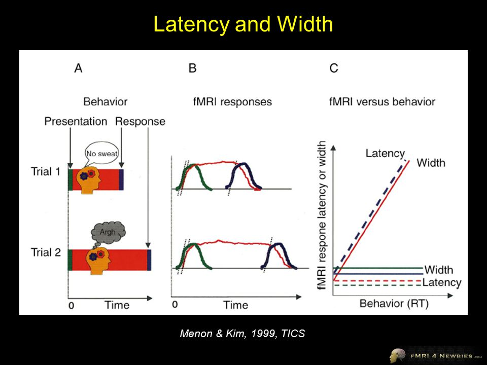 Latency and Width Menon & Kim, 1999, TICS