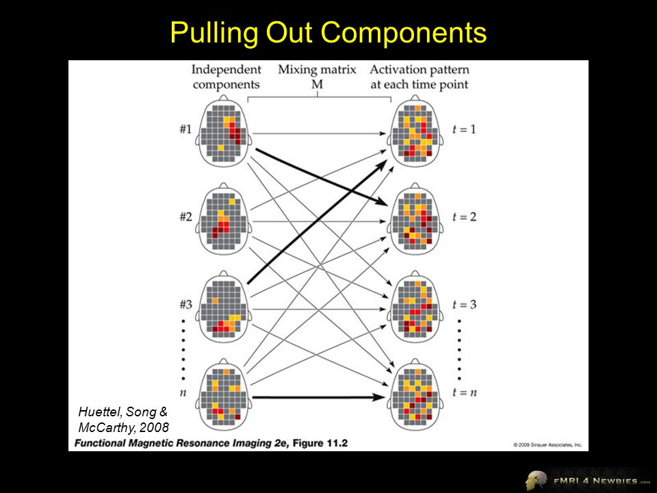 Pulling Out Components Huettel, Song & McCarthy, 2008