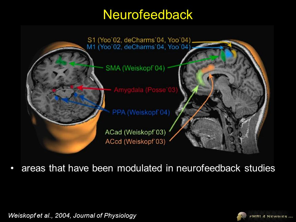 Neurofeedback areas that have been modulated in neurofeedback studies Weiskopf et al., 2004, Journal of Physiology