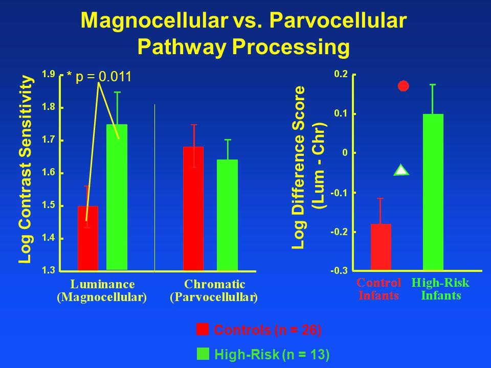 Magnocellular vs.
