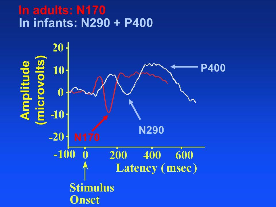 Amplitude (microvolts) - - In adults: N170 N170 In infants: N290 + P400 N290 P400
