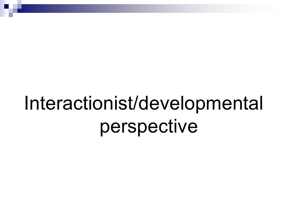 Interactionist/developmental perspective