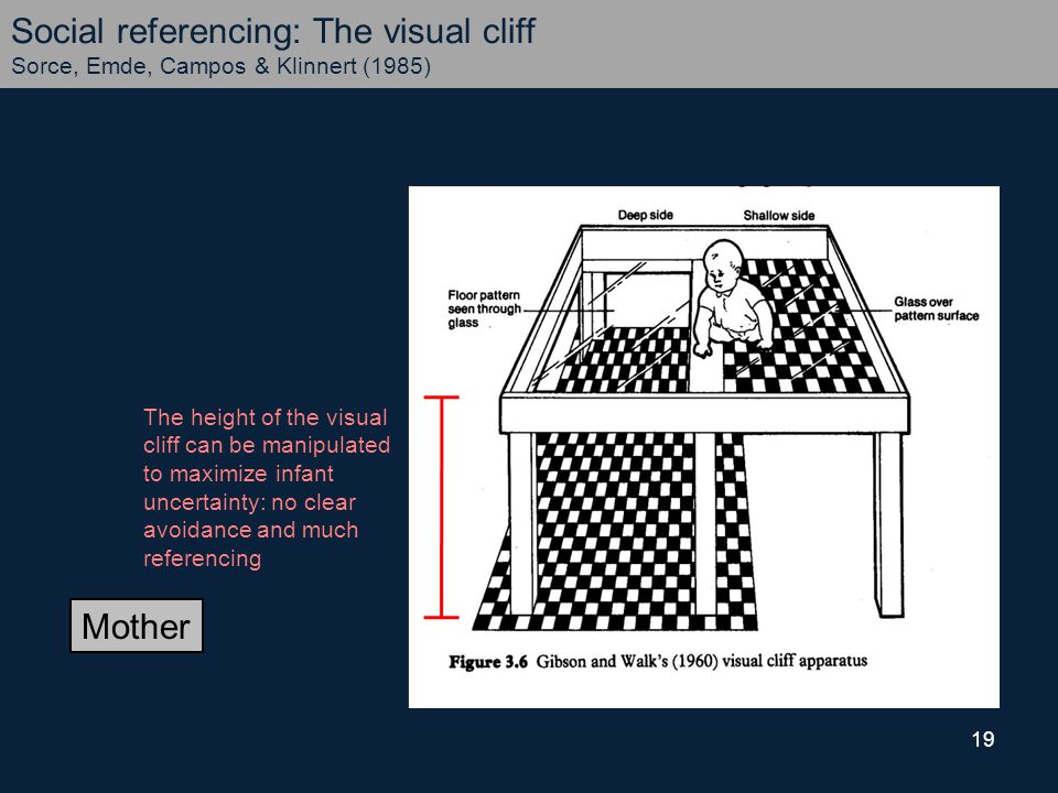 19 Mother Social referencing: The visual cliff Sorce, Emde, Campos & Klinnert (1985) The height of the visual cliff can be manipulated to maximize infant uncertainty: no clear avoidance and much referencing