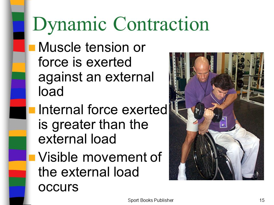 Sport Books Publisher15 Dynamic Contraction Muscle tension or force is exerted against an external load Internal force exerted is greater than the ext
