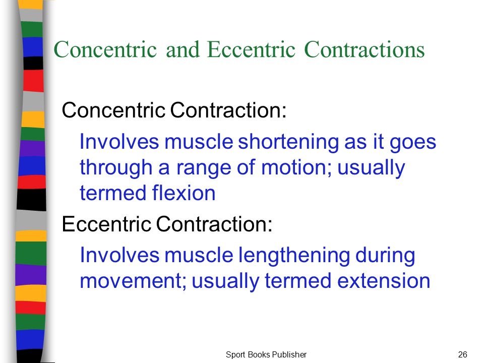 Sport Books Publisher26 Concentric and Eccentric Contractions Concentric Contraction: Involves muscle shortening as it goes through a range of motion;