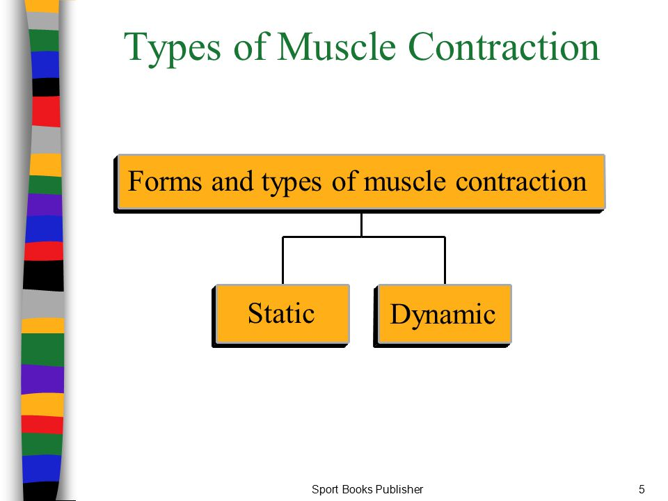 Sport Books Publisher46 Maximal Strength Maximal Strength: The ability to perform maximal voluntary muscular contractions in order to overcome powerful external resistances One Repetition Maximum (1RM): The greatest force that can be exerted during one repetition for a given contraction of muscles