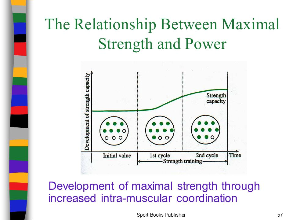 Sport Books Publisher57 The Relationship Between Maximal Strength and Power Development of maximal strength through increased intra-muscular coordinat