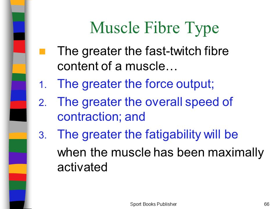 Sport Books Publisher66 Muscle Fibre Type The greater the fast-twitch fibre content of a muscle… 1. The greater the force output; 2. The greater the o