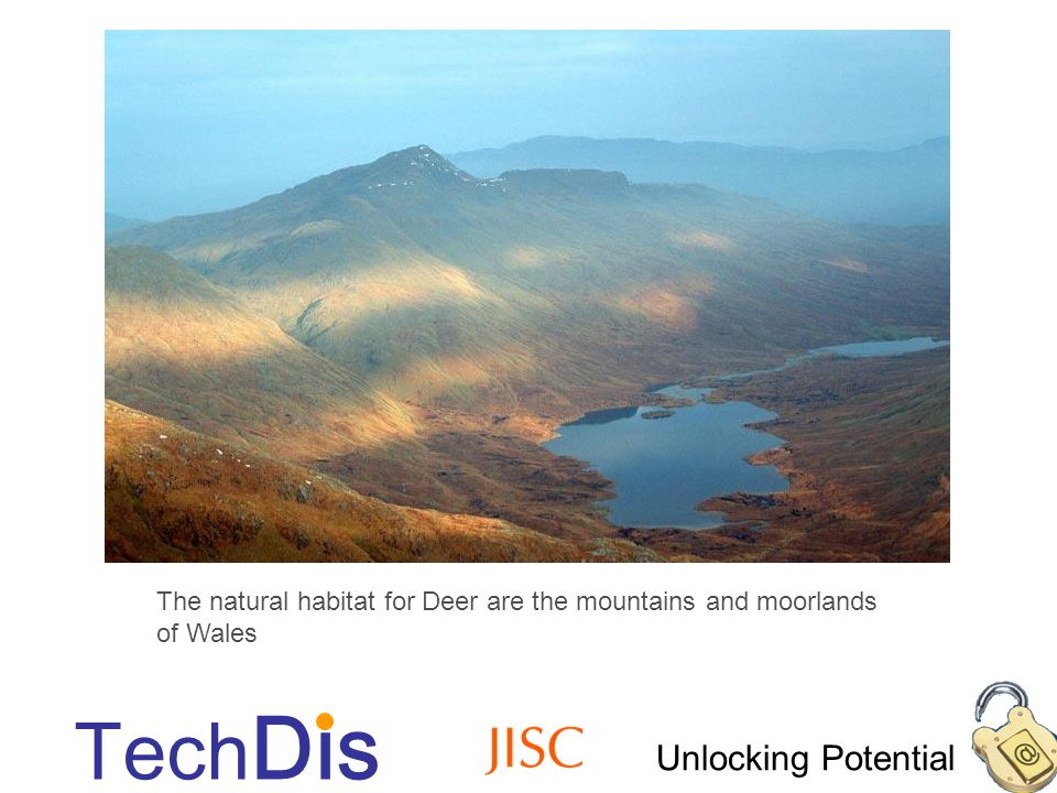 Unlocking Potential Tech Dis Accessible images