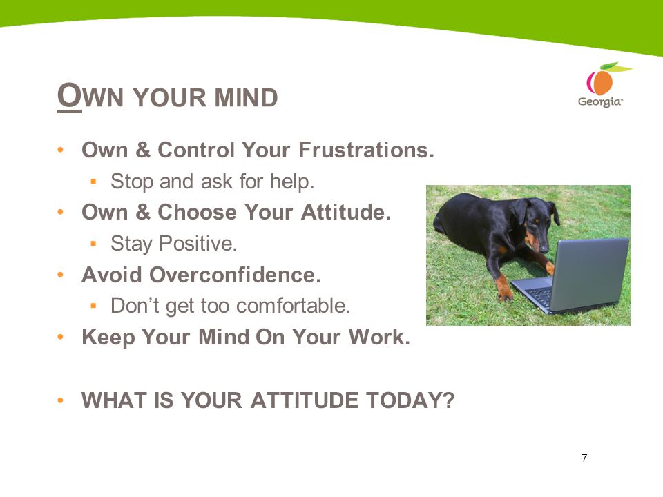 7 O WN YOUR MIND Own & Control Your Frustrations. ▪Stop and ask for help. Own & Choose Your Attitude. ▪Stay Positive. Avoid Overconfidence. ▪Don't get