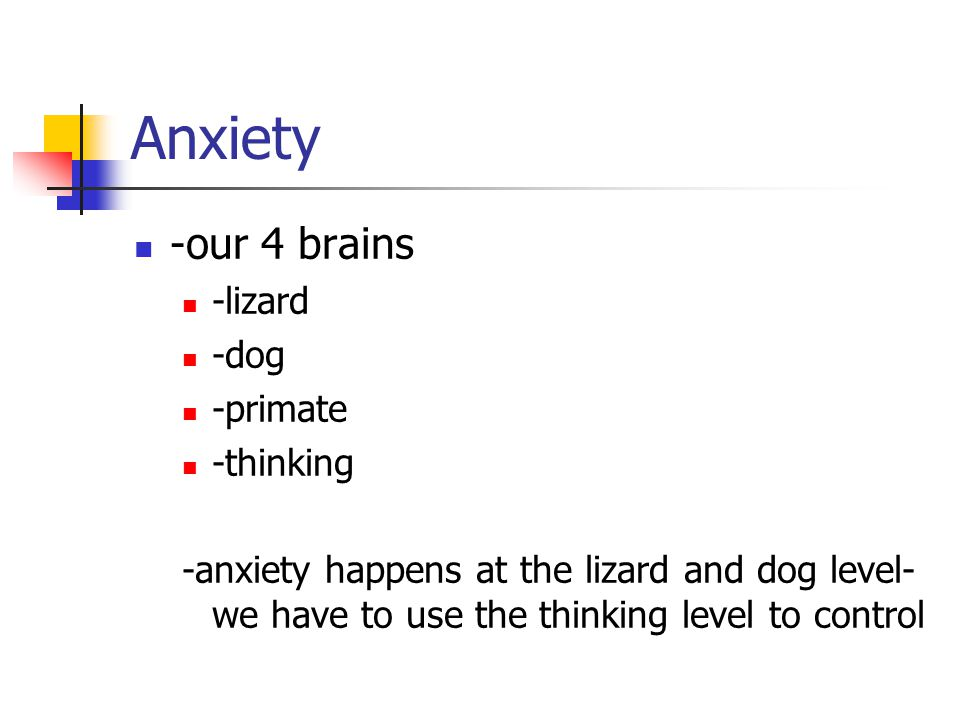 Anxiety -our 4 brains -lizard -dog -primate -thinking -anxiety happens at the lizard and dog level- we have to use the thinking level to control
