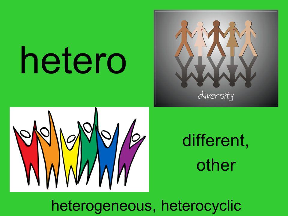 hetero different, other heterogeneous, heterocyclic