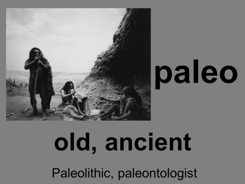 paleo old, ancient Paleolithic, paleontologist