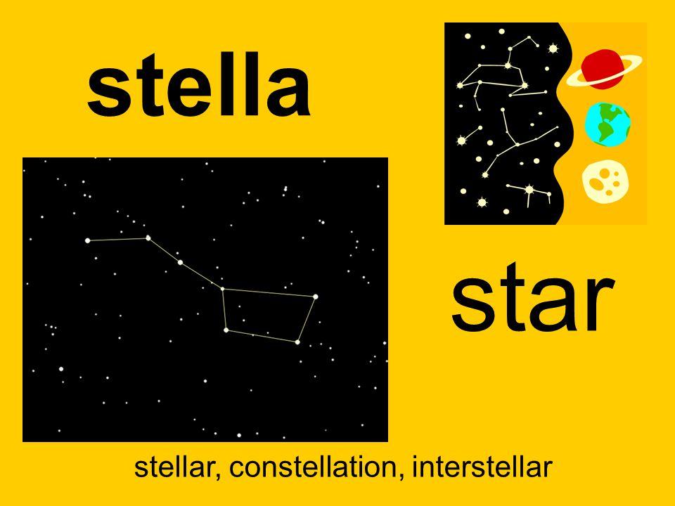 stella star stellar, constellation, interstellar