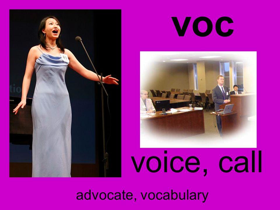 voc voice, call advocate, vocabulary