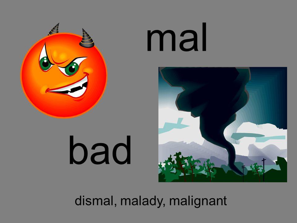 mal bad dismal, malady, malignant