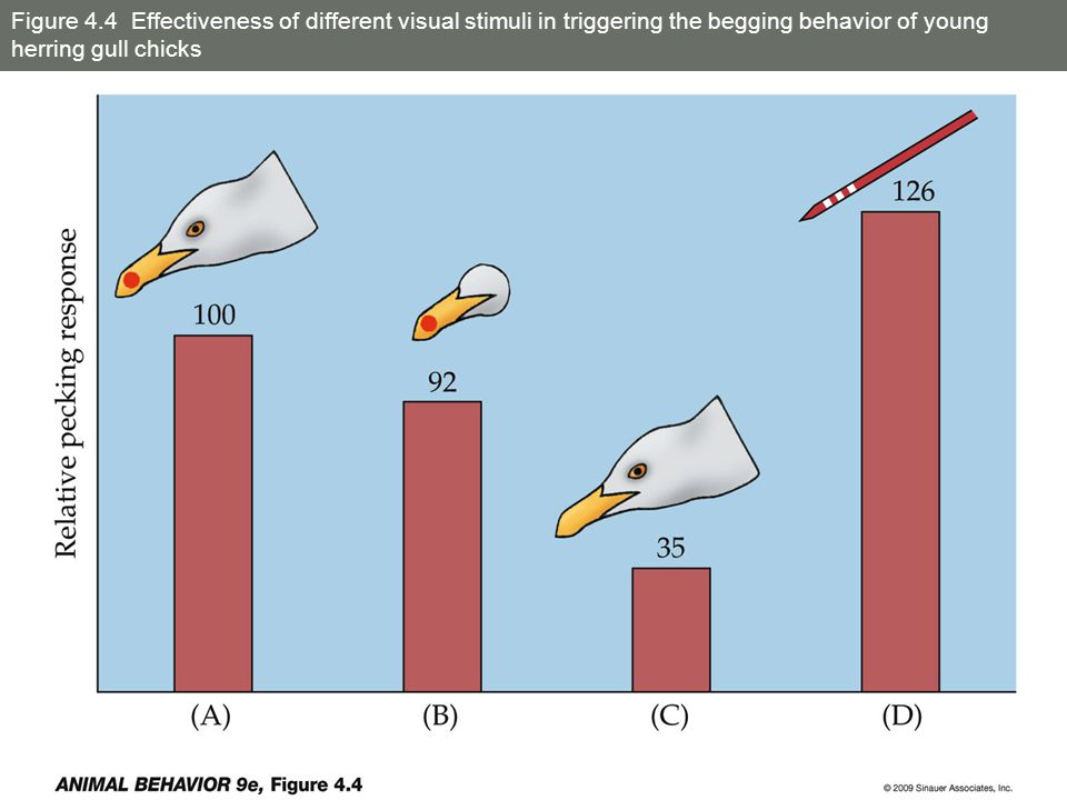 Figure 4.17 Avoidance of and attraction to different sound frequencies by crickets
