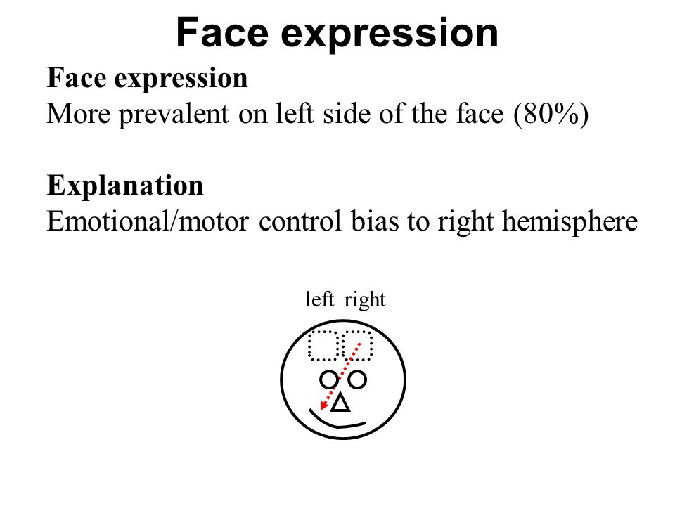 Face expression More prevalent on left side of the face (80%) Explanation Emotional/motor control bias to right hemisphere rightleft