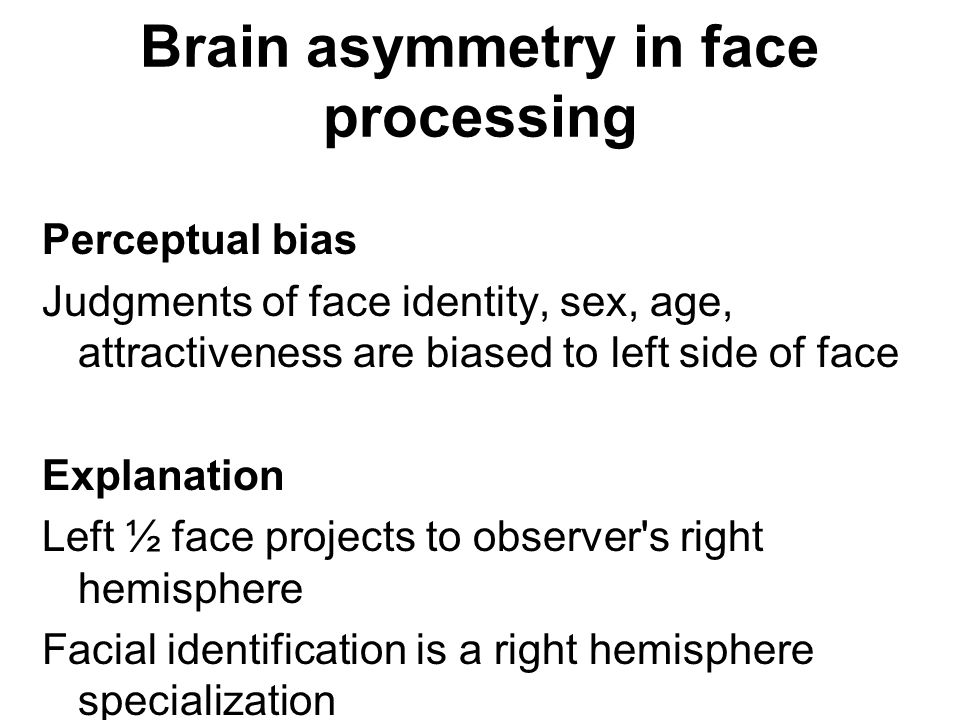 Brain asymmetry in face processing Perceptual bias Judgments of face identity, sex, age, attractiveness are biased to left side of face Explanation Le