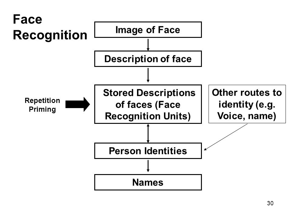 30 Image of Face Stored Descriptions of faces (Face Recognition Units) Person Identities Names Face Recognition Description of face Other routes to id