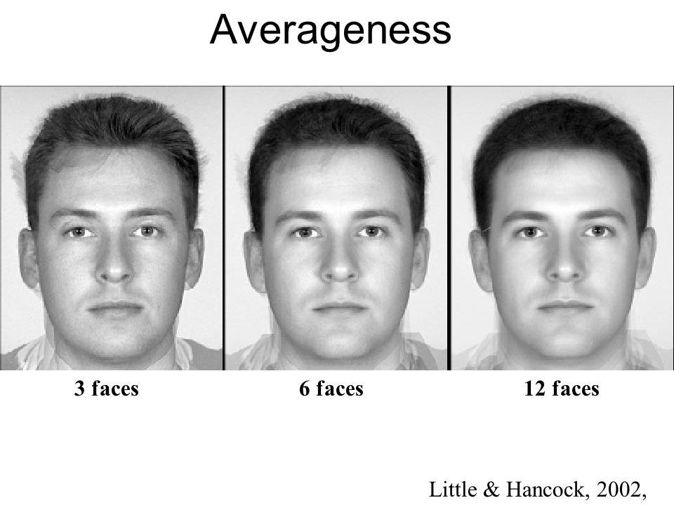 Averageness Little & Hancock, 2002, 3 faces 6 faces 12 faces