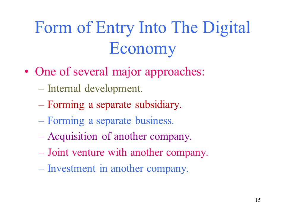 15 Form of Entry Into The Digital Economy One of several major approaches: –Internal development.