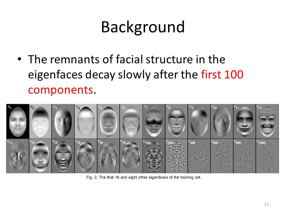 Background 11 The remnants of facial structure in the eigenfaces decay slowly after the first 100 components.