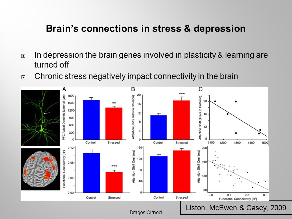 Brain's connections in stress & depression  In depression the brain genes involved in plasticity & learning are turned off  Chronic stress negatively impact connectivity in the brain Dragos Cirneci Liston, McEwen & Casey, 2009