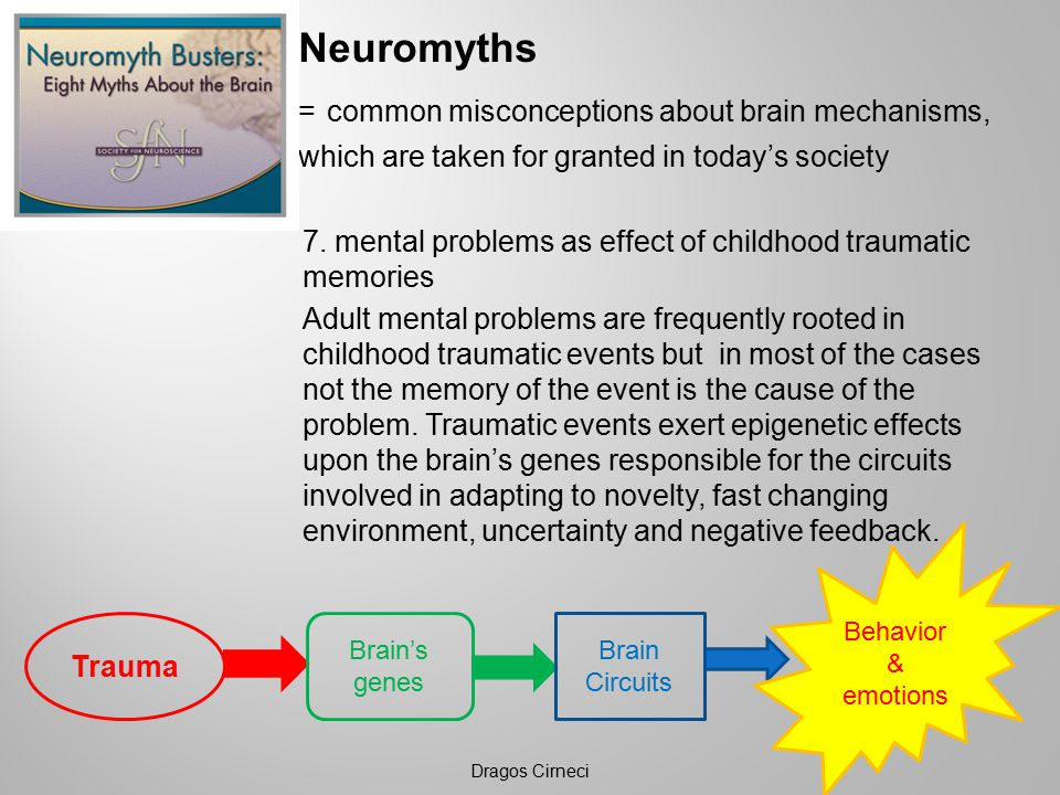 Neuromyths = common misconceptions about brain mechanisms, which are taken for granted in today's society 7.