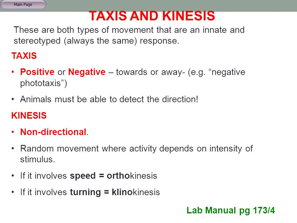 """TAXIS AND KINESIS TAXIS Positive or Negative – towards or away- (e.g. """"negative phototaxis"""") Animals must be able to detect the direction! KINESIS Non"""