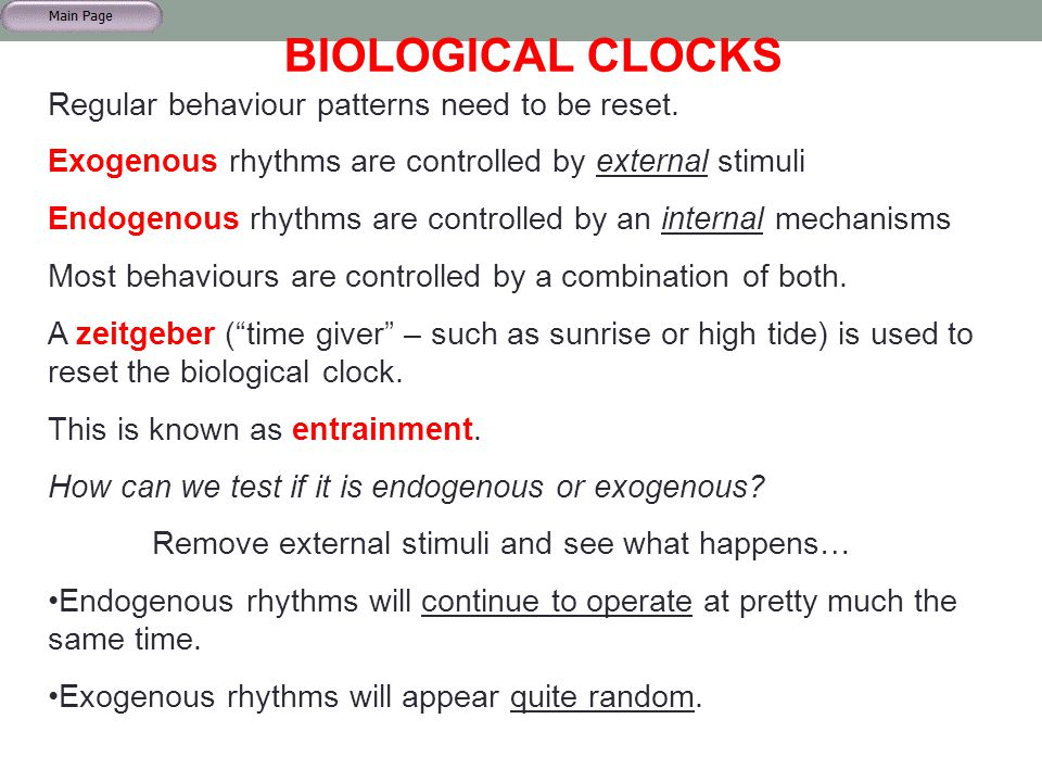 BIOLOGICAL CLOCKS Regular behaviour patterns need to be reset. Exogenous rhythms are controlled by external stimuli Endogenous rhythms are controlled