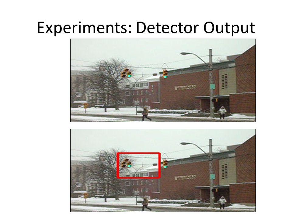 Experiments: Detector Output