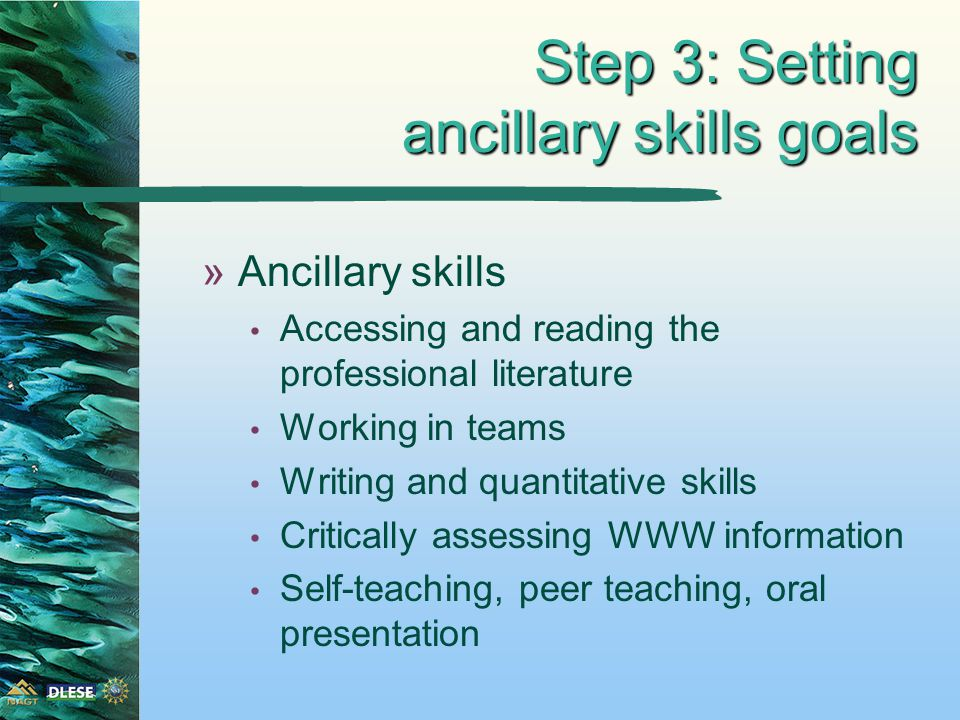 Step 3: Setting ancillary skills goals »Ancillary skills Accessing and reading the professional literature Working in teams Writing and quantitative skills Critically assessing WWW information Self-teaching, peer teaching, oral presentation