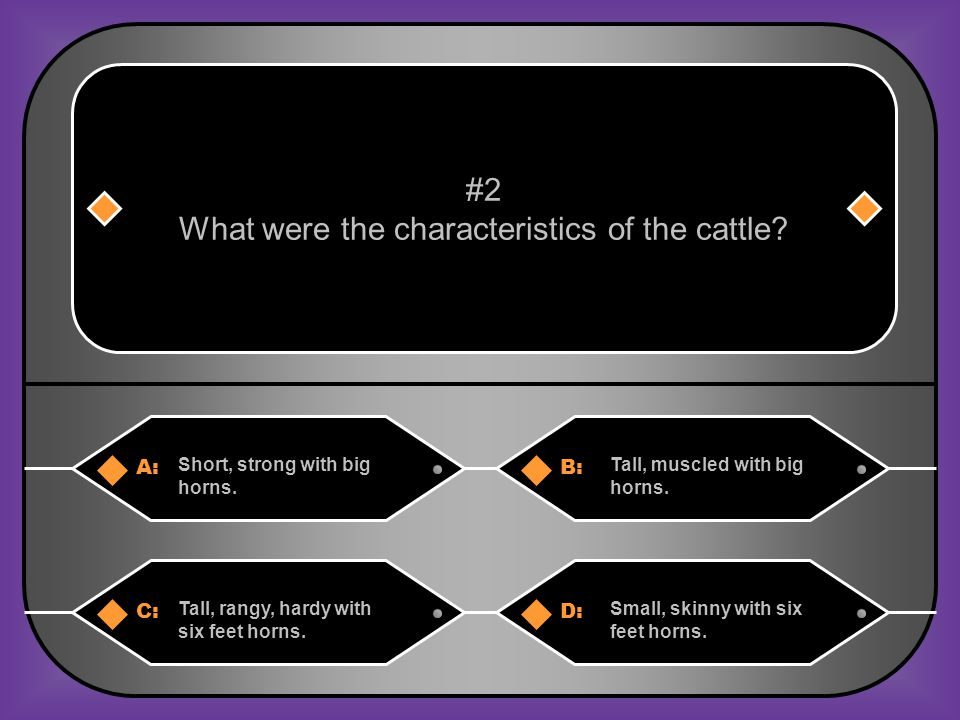 A:B: Short, strong with big horns.Tall, muscled with big horns.