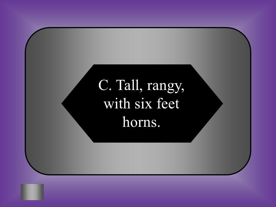 C. Tall, rangy, with six feet horns.