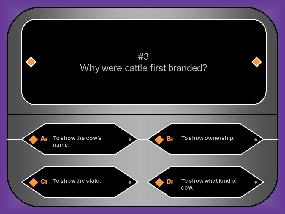 A:B: Find better fields.Find better markets.#13 Why were cattle drives begun.